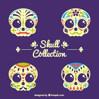 Pacote de crânios ornamentais coloridas