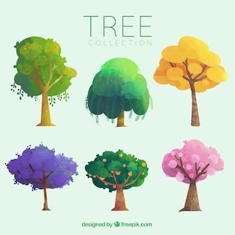 Pacote de diferentes árvores com frutas