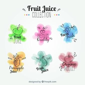 Pacote de etiquetas de frutas com manchas de aquarela