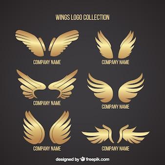 Pacote de logos com asas douradas