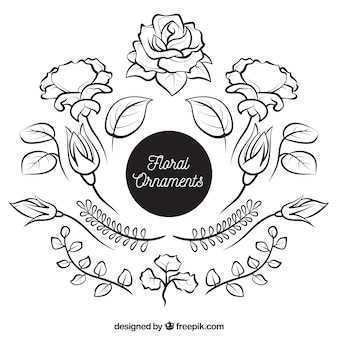 Pacote de ornamentos naturais desenhados à mão