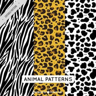 Pacote de padrões animais decorativos