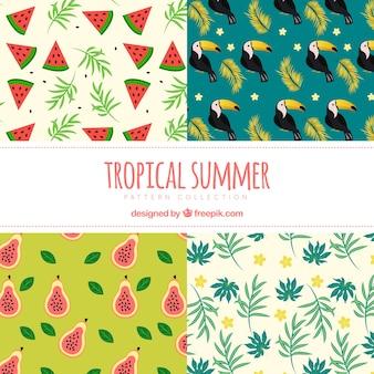 Pacote de padrões de verão com frutas e toucan