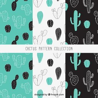 Pacote de padrões decorativos com esboços de cactos