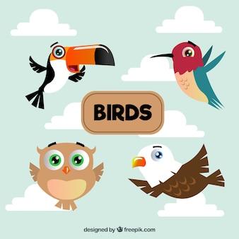 Pacote de pássaros planos voando