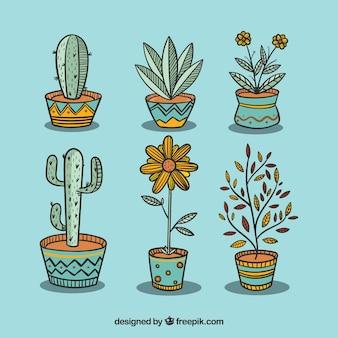 Pacote de plantas e vasos de flores bonitas