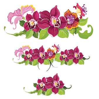 Padrão de elementos florais tropicais