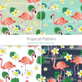 Padrões decorativos de flamingos e flores de aguarela