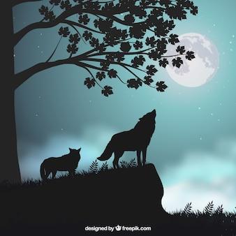 Paisagem de fundo com silhuetas de lobos