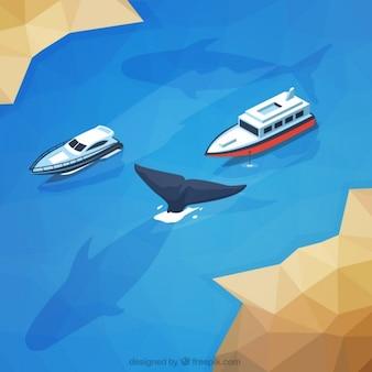 Paisagem selvagem com navios e uma baleia