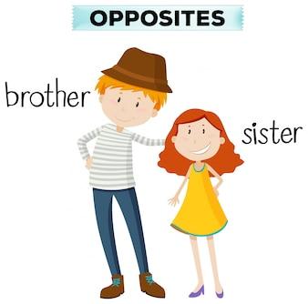 Palavras opostas para irmão e irmã