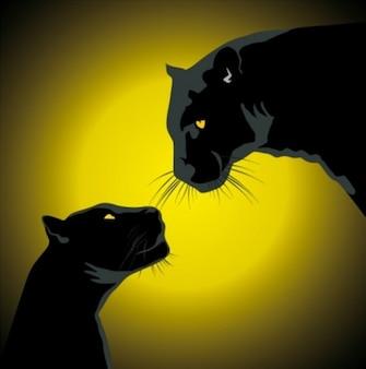 Par de panteras negras com fulgor da noite