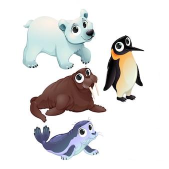 Personagens animais polares engraçado do vetor dos desenhos animados isolado