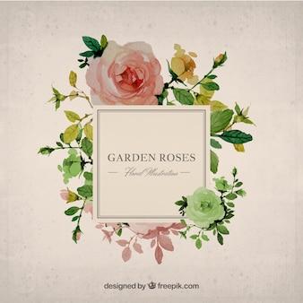 Pintados à mão rosas do jardim fundo