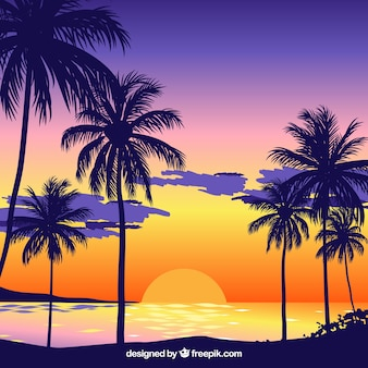 Pôr do sol, fundo, praia, palma, árvores