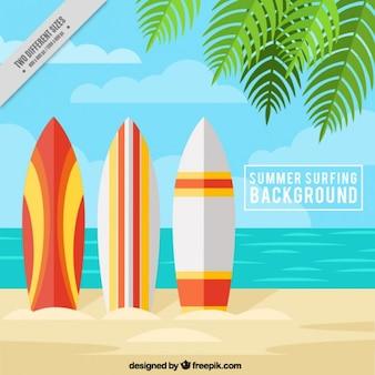 Praia do verão com pranchas de surf