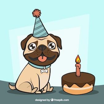 Pug feliz na festa de aniversário