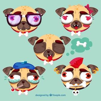 Pugs feios com estilo original