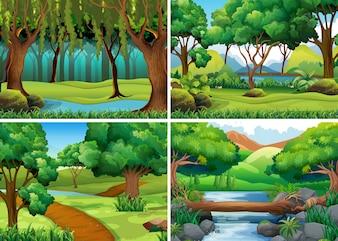 Quatro cenas de floresta e rio