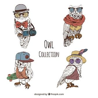Quatro moda corujas desenhado à mão no estilo do vintage