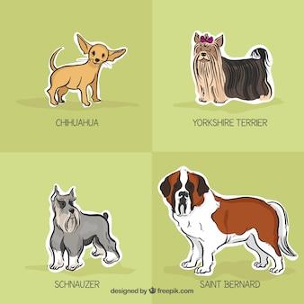 Raças de cães desenhados mão embalar