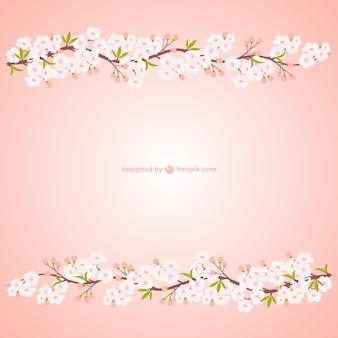 Ramos com flores de cerejeira