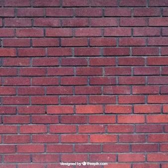 Realistic tijolos textura vermelho
