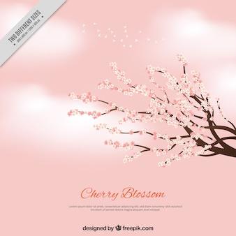 Rosa com nuvens e ramos com flores de cerejeira