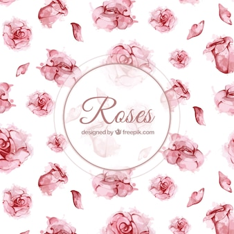 Rosa, fundo, aguarela, estilo