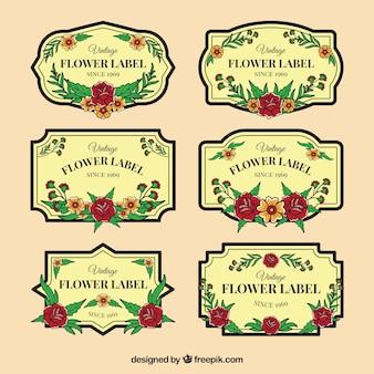 Seleção de seis etiquetas florais do vintage