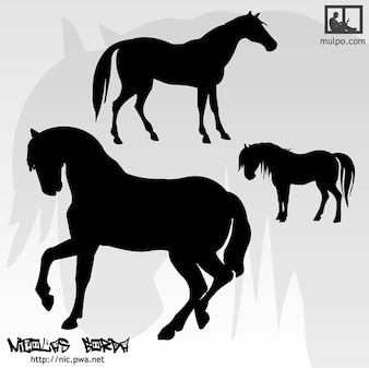 Silhuetas cavalos