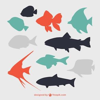 Silhuetas de peixes lisos
