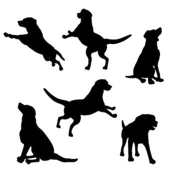 Silhuetas dos cães em vários poses