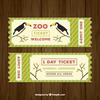 ticket zoológico com dois tucanos