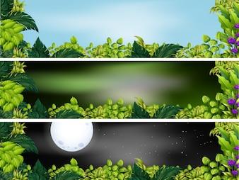 Três cenas de jardim em diferentes horários do dia