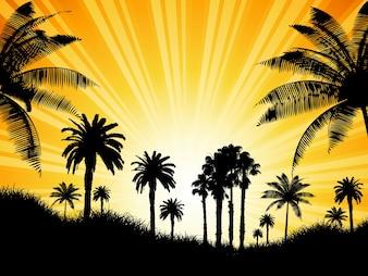 Tropical fundo com palmeiras contra um céu ensolarado