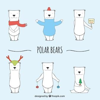 Ursos polares esboçado