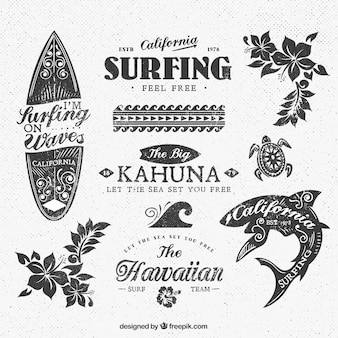Variedade de insígnias de surf