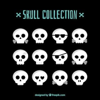 Vários grandes crânios decorativos