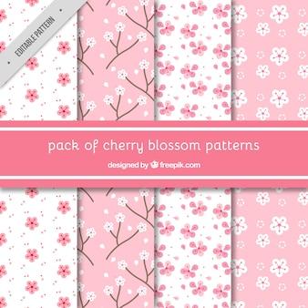 Vários padrões decorativos de flores de cerejeira
