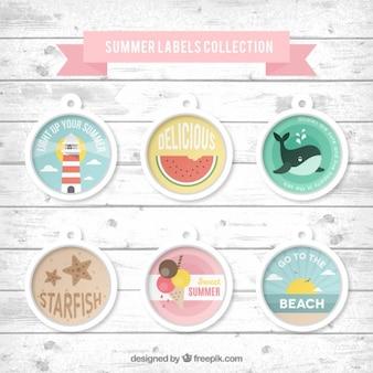 Verão etiqueta a coleção