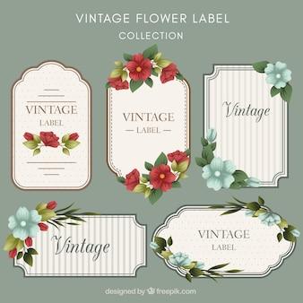 Vintage, pacote, liso, floral, etiquetas
