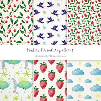 Watercolor Nature Collection Pattern