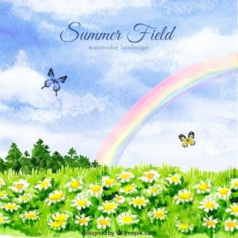 Acquerello sfondo campo con margherite e farfalle