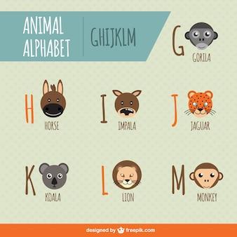 Alfabeto degli animali vettoriali gratis