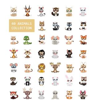 Animali collezione colorata
