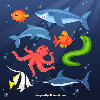 Animali marini