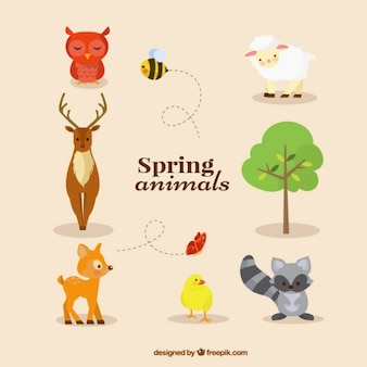 Animals collection in primavera