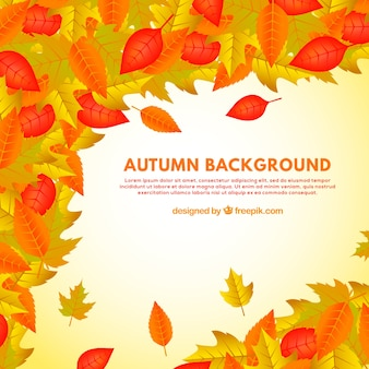 Autumn leaves frame background