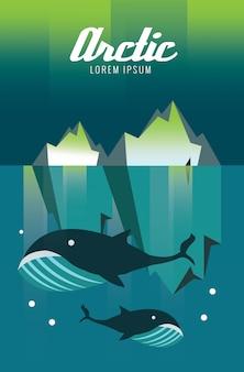 Balena e iceberg. Arctic Aurora natura. elementi di design piatto. illustrazione vettoriale
